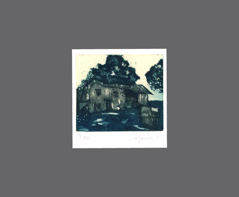 Haus auf Hawaii auf zweifarbig eingef&auml;rbter Druckplatte<br />Radierung, Zuckertusche und Aquatinta – Bildformat ca. 14 x 17 cm