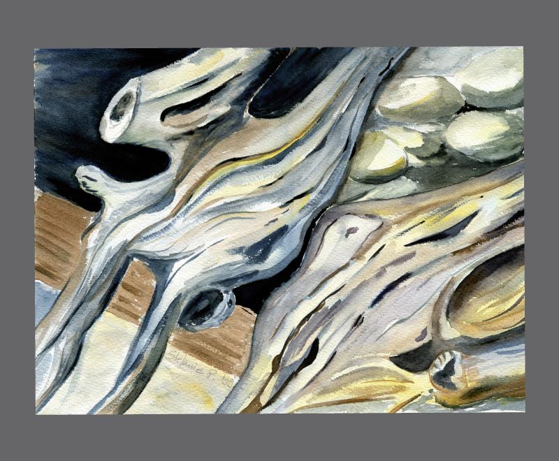 Wurzel<br />Aquarell, Format ca. 34 x 28 cm